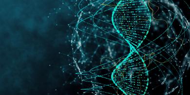 Магистральная квантовая сеть будет состоять из опорных узлов, обеспечивающих географическую связность распределенных центров оказания услуг