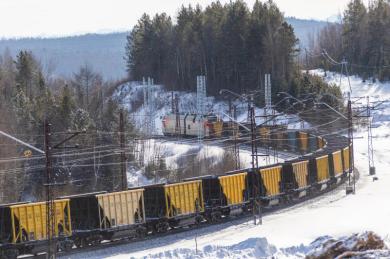 В марте погрузка цемента на железнодорожный транспорт в Приморье выросла на 5%