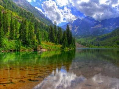 Владимир Афонский: при реализации закона, позволяющего вырубку леса на Байкала для расширения БАМа, будет и экологический, и общественный контроль